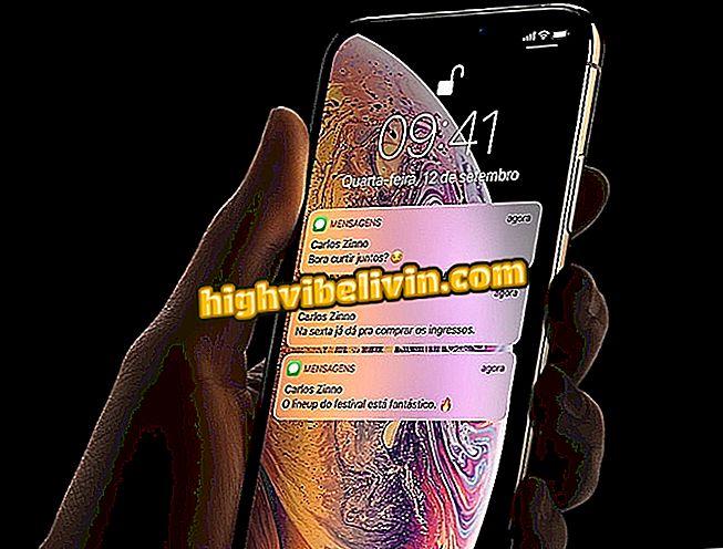 So installieren Sie iOS 12 auf dem iPhone