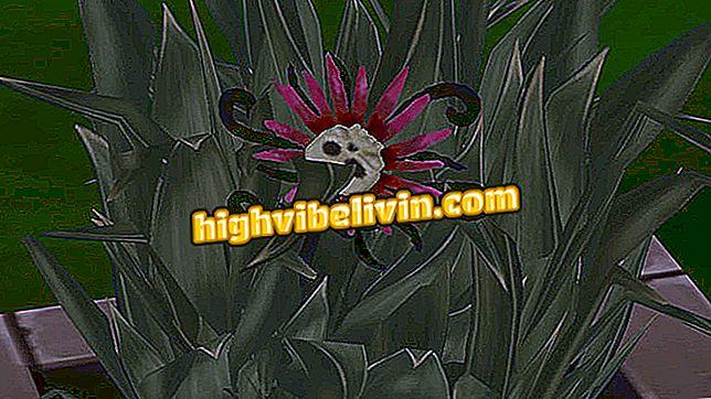 Wie man die Todesblume in Die Sims bastelt 4