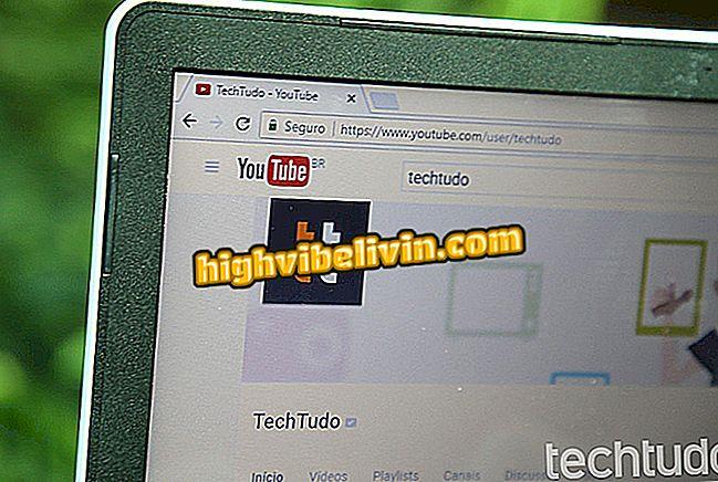 So laden Sie Videos von YouTube mit Videoder per PC herunter