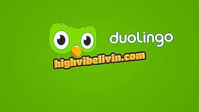 Làm thế nào để học tiếng Anh với Duolingo Tinycards