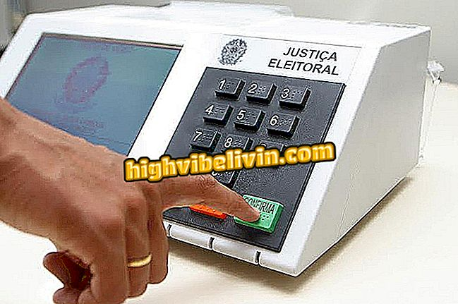 Cola electoral: cómo hacer e imprimir la suya en la orden de votación