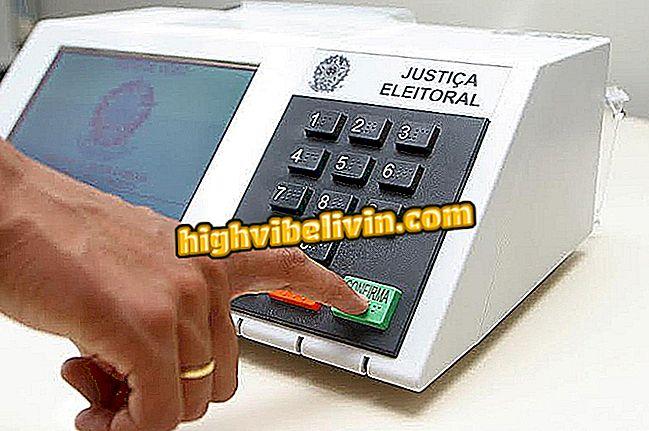 Как использовать симулятор электронного голосования TSE, чтобы знать, как голосовать