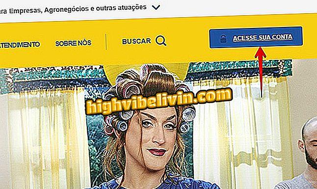 """Kaip susipažinti su """"Banco do Brasil"""" pajamų ataskaita internetu"""