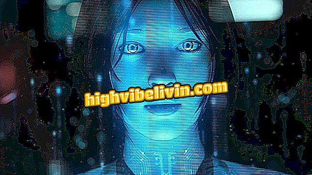 Kategorie wie: Suchen und Löschen von Suchen nach Cortanas Geschichte