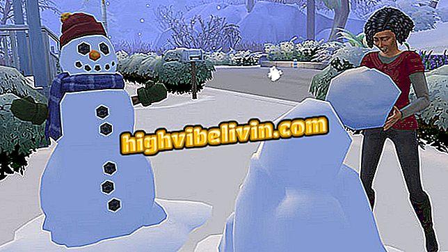 Sarakstā ir kodi un Mīklas, kas jāizmanto The Sims 4 Seasons
