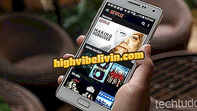 Offline-Leben auf Android: Lernen Sie, Inhalte auf Netflix und Spotify herunterzuladen