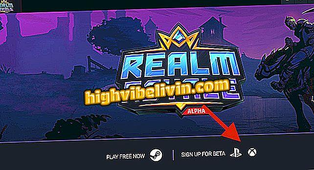 Paladins Realm Royale: Siehe Voraussetzungen und wie man an der Beta teilnehmen kann