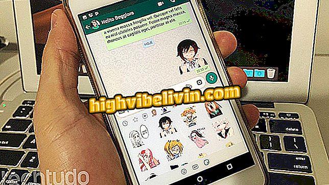 suggerimenti ed esercitazioni - Anime WhatsApp: come scaricare e utilizzare il pacchetto