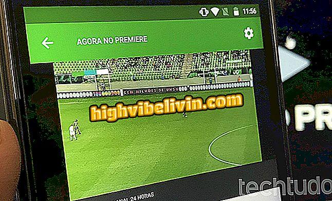 Premiere Play: cómo descargar y usar la aplicación para ver los juegos en vivo