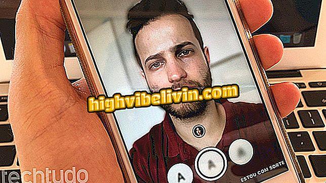 Anwendung, die den Hintergrund des Fotos verwischt: Sie wissen, wie der Fabby verwendet wird