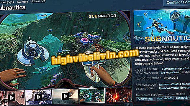 Subnautica: cómo jugar mod multijugador Nitrox