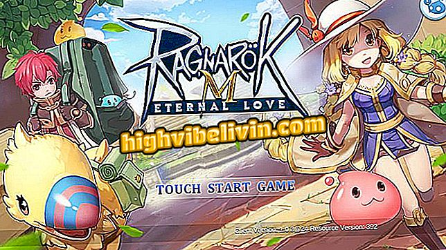 Tipps und Tutorials - Ragnarok M: Eternal Love: wie man das berühmte Handy auf dem PC spielt
