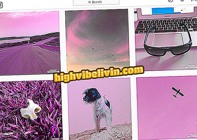 Feed auf Instagram organisiert: Erfahren Sie, wie Sie Ihre Fotos in Rosatönen hinterlassen