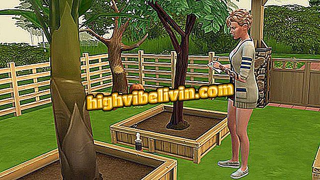Categoria suggerimenti ed esercitazioni: Consigli per essere un giardiniere in The Sims 4 Seasons