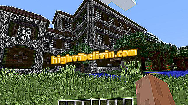 Kategorija savjete i vodiče: Totem besmrtnosti Minecrafta