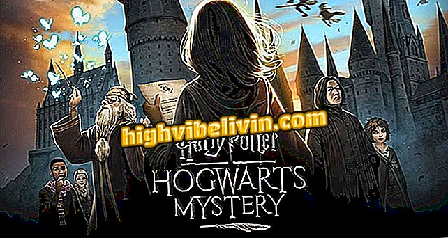 Harry Potter: Misterija Hogwartsa